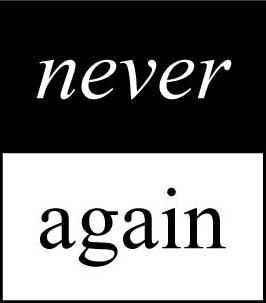 Never Again >> Never Again International Organizations Takingitglobal